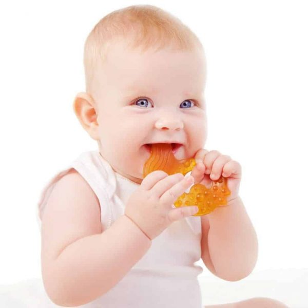 nn7001 caaocho all stage fish teether teething soothing toddler natural rubber baby